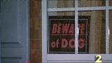 Beware of Dog sign_1000152