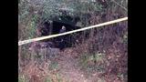 Body found in creek_4219846