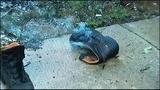 O'Connor's smoldering boot_5415468