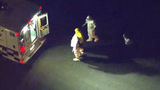 Ebola patient Amber Vinson walks into ambulance_6273150