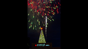 Fireworks go off above the Christmas tree on top of the Macy's building at Lenox Square Mall in Atlanta during the annual tree lighting ceremony on Thursday, Nov. 27, 2014. Thousands of people came out to watch the show which featured performances by The Isley Brothers, Pentatonix, tenor Timothy Miller and many more. JONATHAN PHILLIPS / SPECIAL