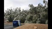 Channel 2 Action News sent us photos of winter weather conditions, ice on roads, and downed trees following cold rain and freezing temperatures on Monday, Feb. 15, 2015.