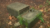 Buckhead community trying to preserve cemetery after vandals hit_7095757