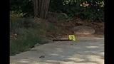Knife from the scene of the stabbing in Gwinnett County_7851704