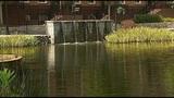 Homeowners saving thousands on bills using groundwater_8036937