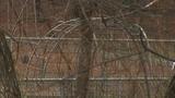 Kindergartner dies while playing on monkey bars, police say_8650013