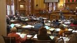 Georgia lawmakers_8770523