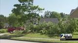 Police: Ambulance crew fight leaves large mess in Gwinnett County neighborhood