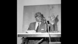 Bayard Rustin was the chief organizer of the 1963 March on Washington for Jobs and Freedom.