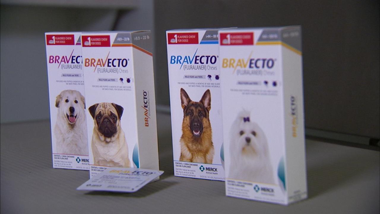 BRAVECTO: Dog owners blame popular flea medicine for pets