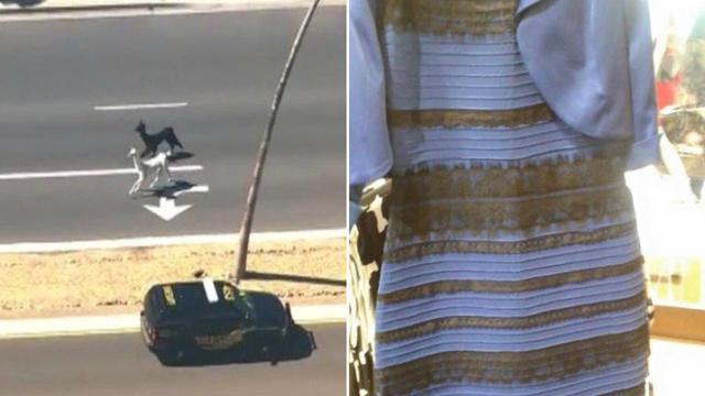 Dress color on internet facebook