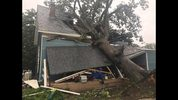 A tree crashed down on a home in Commerce, Georgia.