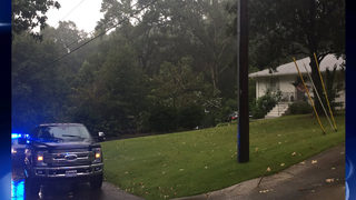 55-year-old man killed when tree falls on home