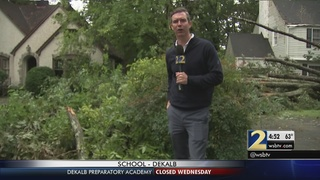 An expert explains how to stay safe from tree, water damage in your home