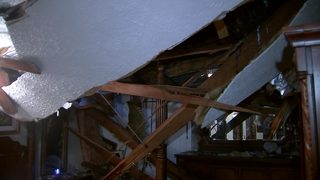 Grandmother pushes grandkids out of the way as tree falls through home