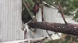 Tropical Storm Irma caused $336M in insured losses across Georgia