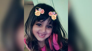 4-year-old shoots, kills self while reaching into grandmother