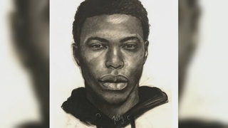 Police search for man accused of sexually assaulting woman at gunpoint