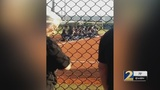 School district stands behind softball team that took a knee during National Anthem