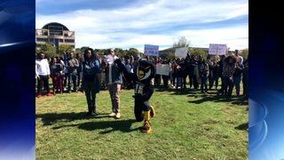 KSU mascot takes knee in support of cheerleaders