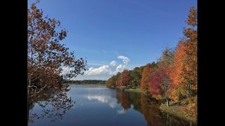 Spend Black Friday outdoors at a Georgia State Park