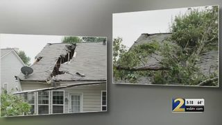 Couple gets big bill from landlord after trees fall