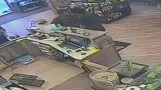 Police searching for suspects who stole 3 boa constrictors from an exotic pet store