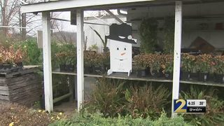 Man keeps stealing plants from local market, deputies say