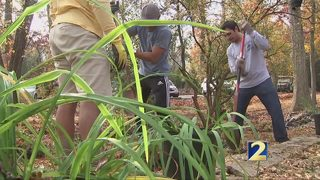 United Way of Greater Atlanta volunteers give Holiday of Service