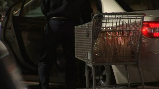 Man robbed, shot at in grocery store parking lot