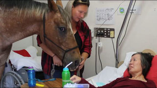 Horse visits retirement home in touching video