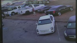 Thieves caught on camera stealing 5 cars from dealership