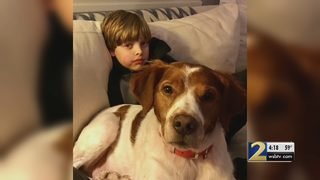 Doctor says at least one child a day rushed to ER for dog bites