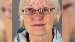 Serial airplane stowaway arrested again at airport