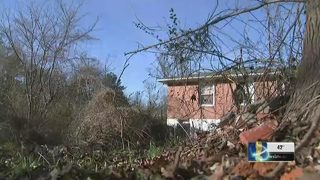 Family says city has ignored overgrown property for years