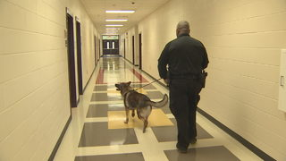 DeKalb schools install new security measures to keep students safe