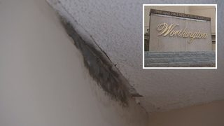 Condo complex says landlord needs to fix mold, deplorable conditions