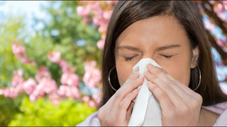 Allergy experts say it