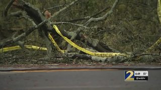 Fallen trees knock out power to dozens in Cobb County