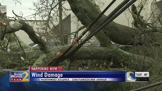 Wind knocks down trees, takes out power in Smyrna
