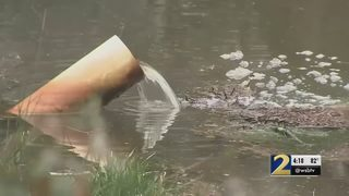 DeKalb County pond restocked with 1,600 fish after massive sewage spill