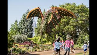 Imaginary Worlds brings dragon, mermaid to Botanical Garden