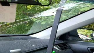 Metal pole crashes through woman
