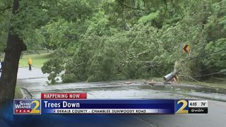 Crews work to clear downed tree, power lines on busy road after heavy rain