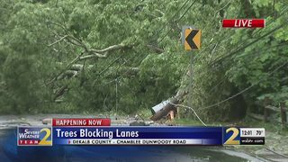 Tree, power lines down after heavy rain in Dunwoody