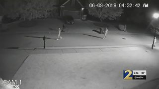 Police working to identify group responsible for thefts in Gwinnett County neighborhood