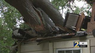 Tree crashes through DeKalb County home