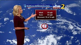 Tropical Depression 2 Forms in the Central Alantic Ocean