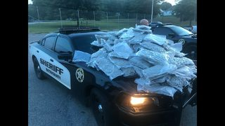 100+ pounds of pot confiscated during traffic stop