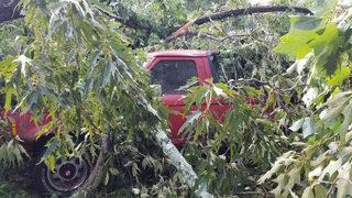 PHOTOS: Strong storms down trees, power lines across metro Atlanta